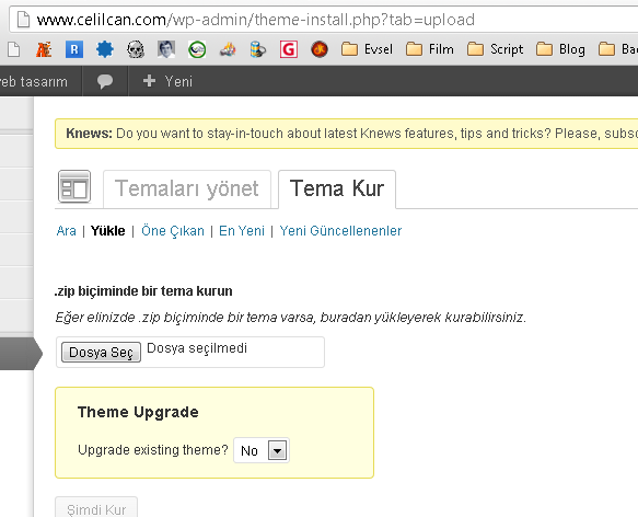 tema-guncelleme-wp-filesystem