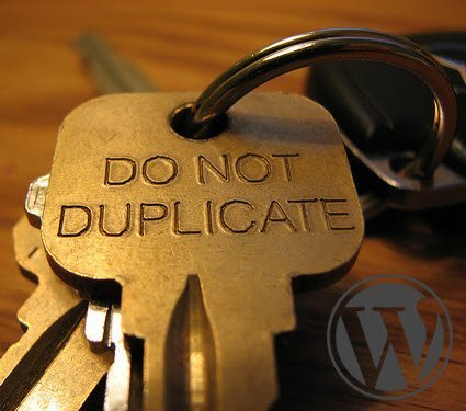 wordpress duplicate description