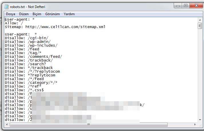 robots-txt-url-kaldirma