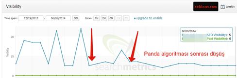 searchmetris panda cezası